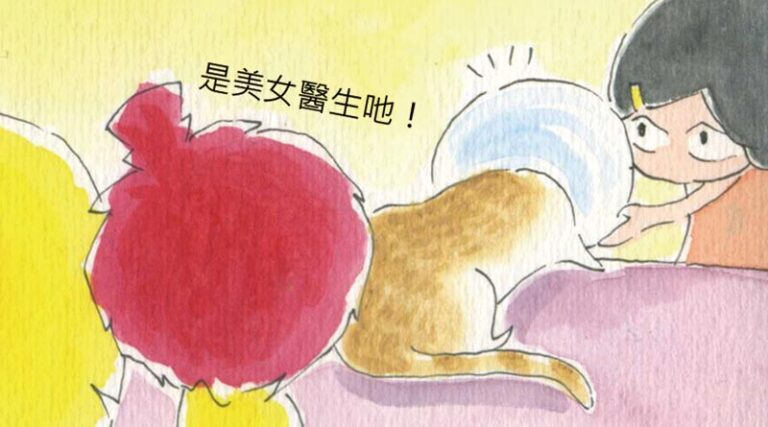 Read more about the article 家裡來了一隻貓 – 37. 戴頭套了