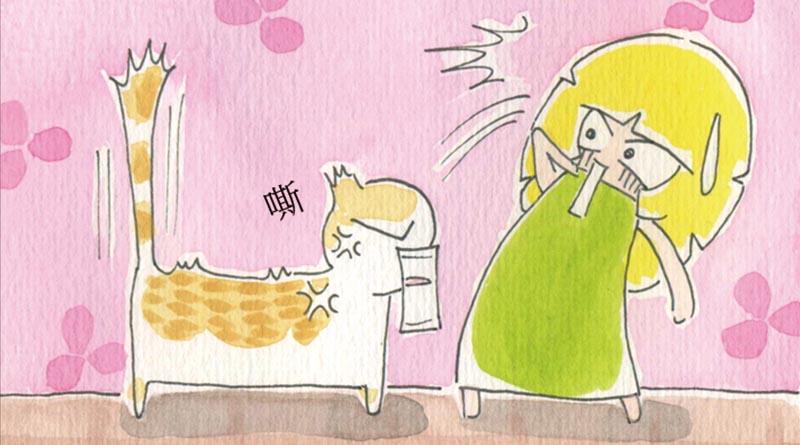 家裡來了一隻貓 誰怕誰呀